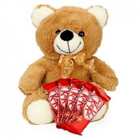 12 Inch Teddy Bear With ...
