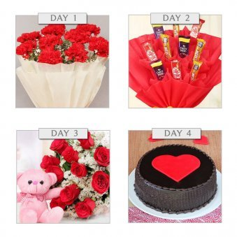 Rose, Chocolate, Teddy, ...