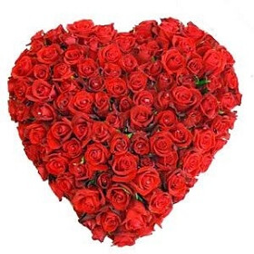 50 Red Rose in Heart Sha...