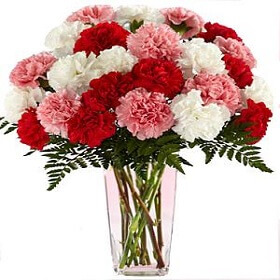 12 mix Carnation in vase