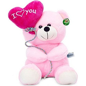 2 feet Pink Teddy Bear