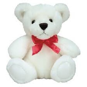 6 inch white Cute teddy