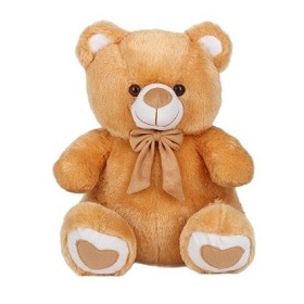 12 inch Richy Toys Teddy...