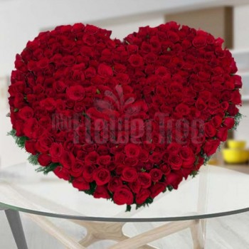300 Red roses  in Heart-...