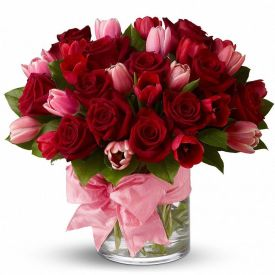 Pink and Red Roses in v...